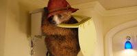 Mit dem Toilettenbesuch hat Paddington so seine Probleme... Bild: StudioCanal