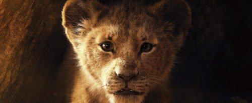Szenenbild aus König der Löwen