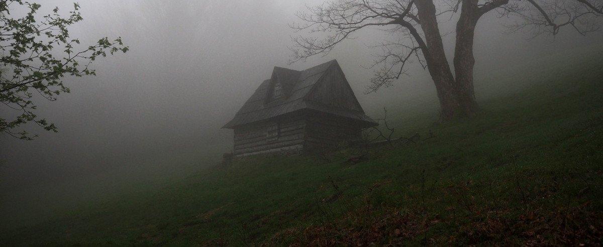 Ein Haus im dichten Nebel auf einer Waldlichtung