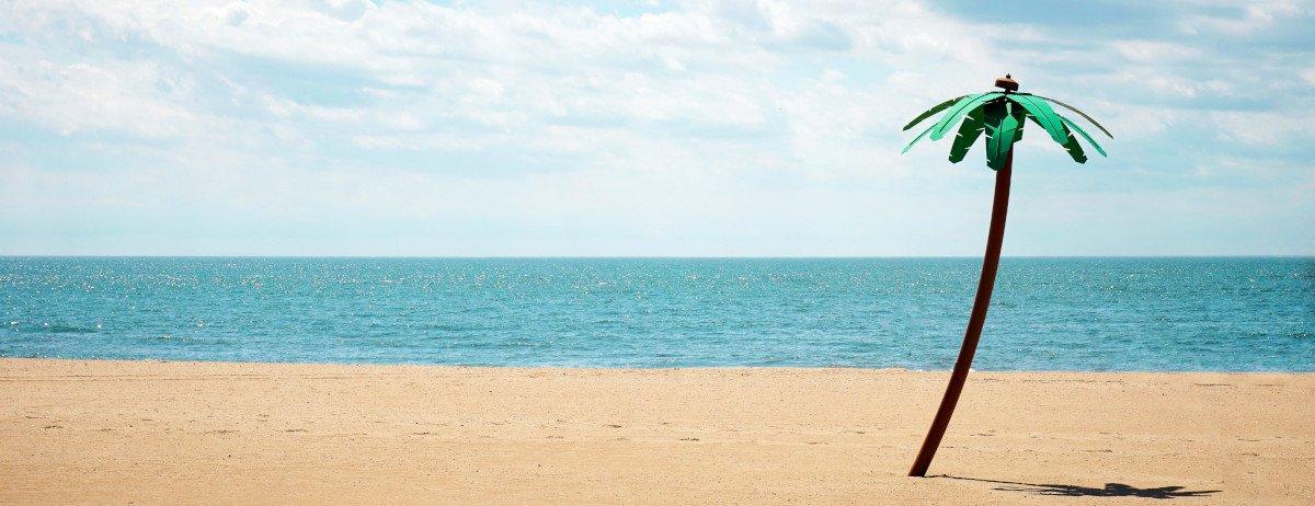 Eine einzelne Palme, die am Strand steht, im Hintergrund das Meer